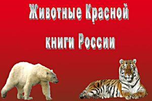 Животные Красной книги России